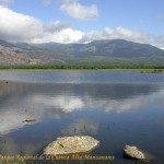Parque Cuenca alta Manzanares 7586d6a2caed1cbc3ff73644826bb441